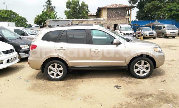 Acheter Voiture Hyundai Santa Fe Autre à Kalamu en Kinshasa