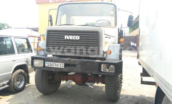 Acheter Utilitaire Iveco Cargo Gris en Kasa Vubu