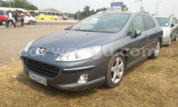 Acheter Voiture Peugeot 407 Gris en Limete