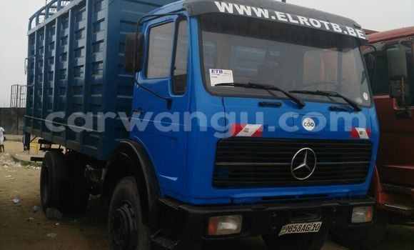 Acheter Utilitaire Mercedes Benz 1719 Bleu à Kalamu en Kinshasa