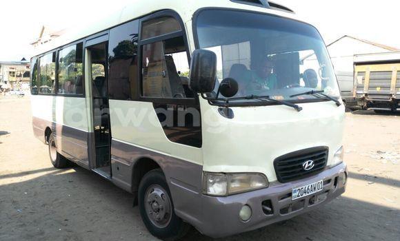 Acheter Voiture Hyundai County Beige en Kasa Vubu