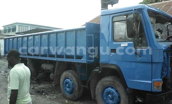 Acheter Utilitaire Volvo F4 Bleu en Ngaliema