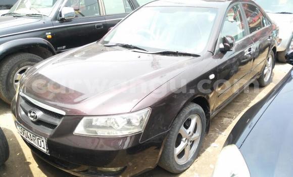 Acheter Voiture Hyundai Sonata Marron en Bandalungwa