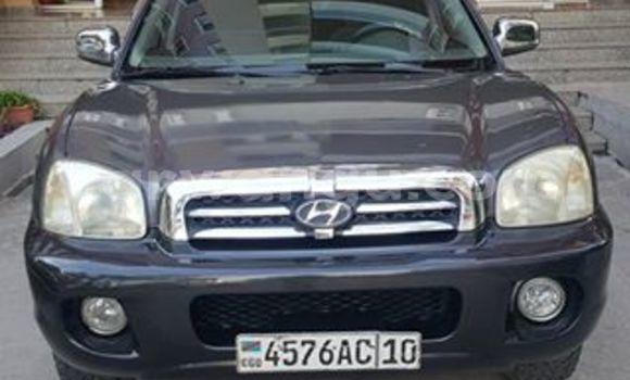 Acheter Voiture Hyundai Santa Fe Autre en Bandalungwa
