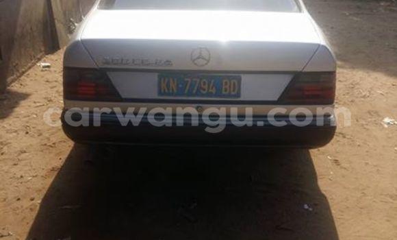 Acheter Voiture Mercedes Benz 300 Gris en Bandalungwa