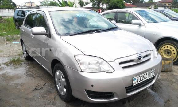 Acheter Voiture Toyota Runx Gris en Limete