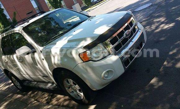 Acheter Voiture Ford Escape Blanc en Bandalungwa