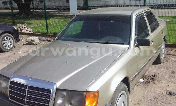 Acheter Voiture Mercedes Benz 250 Vert en Ngaliema