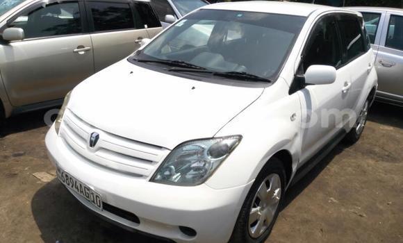 Acheter Voiture Toyota IST Blanc en Kalamu