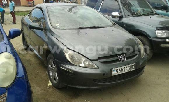 Acheter Voiture Peugeot 307 Gris à Limete en Kinshasa