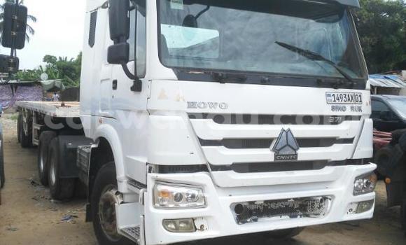 Acheter Utilitaire Sinotruk Howo Blanc à Kalamu en Kinshasa