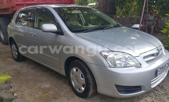 Acheter Voiture Toyota Allex Gris à Bandalungwa en Kinshasa