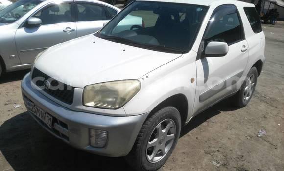 Acheter Voiture Toyota RAV4 Blanc en Kasa Vubu