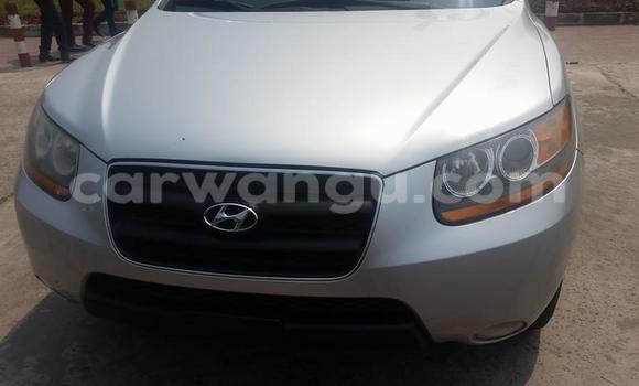 Acheter Voiture Hyundai Santa Fe Gris à Bandalungwa en Kinshasa