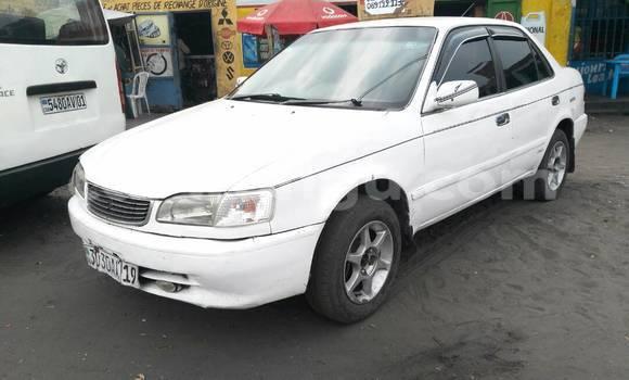 Acheter Voiture Toyota Corolla Blanc à Masina en Kinshasa