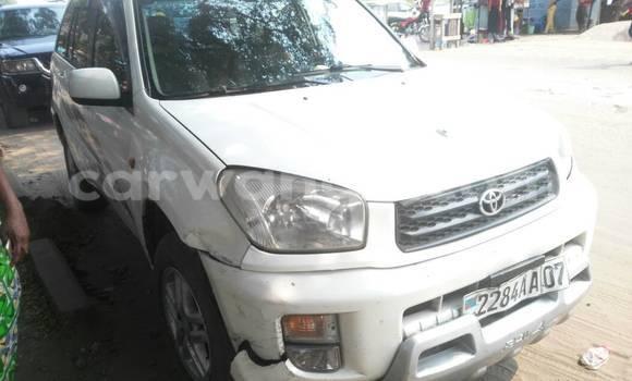 Acheter Voiture Toyota RAV4 Blanc à Gombe en Kinshasa
