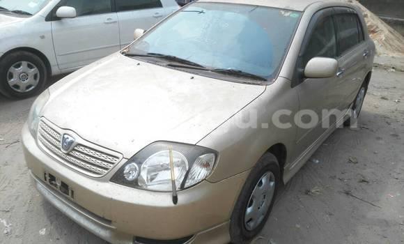 Acheter Voiture Toyota Allex Autre à Ngaliema en Kinshasa