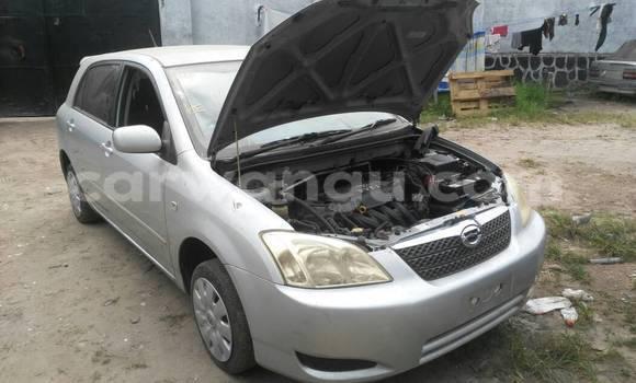Acheter Voiture Toyota Allex Gris à Ngaliema en Kinshasa