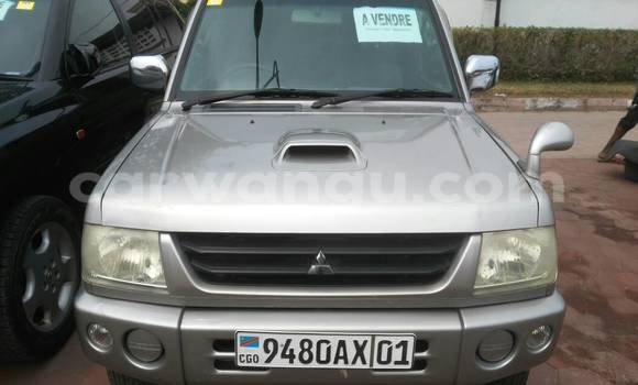 Acheter Voiture Mitsubishi Pajero Gris à Gombe en Kinshasa