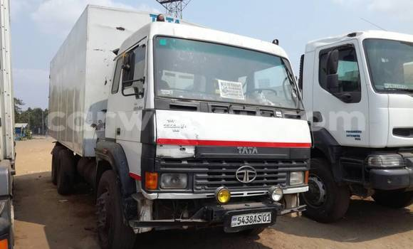 Acheter Utilitaire Tata 613 Blanc à Kalamu en Kinshasa