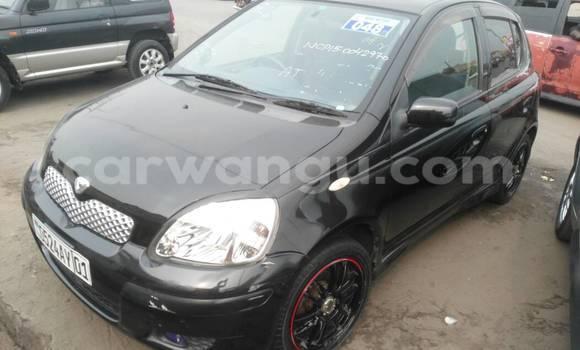 Acheter Voiture Toyota Vitz Noir à Kasa Vubu en Kinshasa