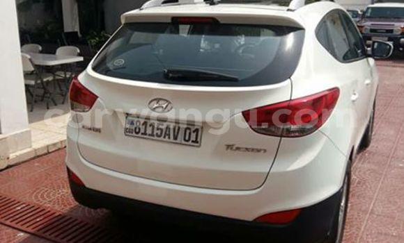 Buy Hyundai Tucson White Car in Bandalungwa in Kinshasa