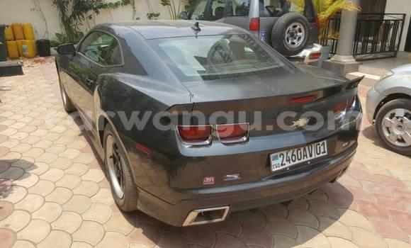 Acheter Voiture Chevrolet Camaro Autre à Ngaliema en Kinshasa