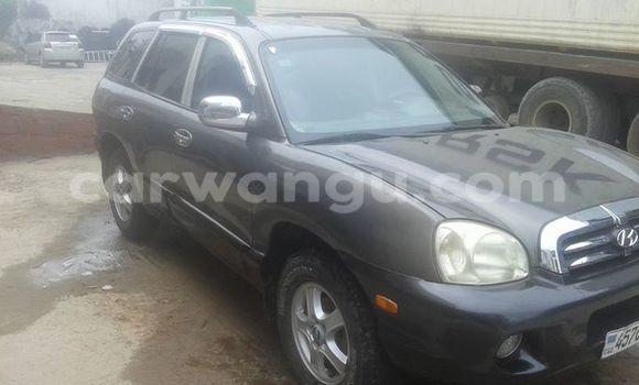 Buy Hyundai Santa Fe Other Car in Bandalungwa in Kinshasa