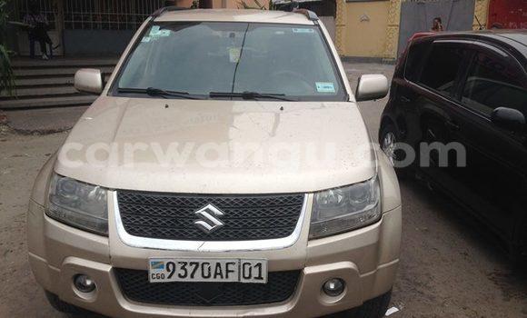 Acheter Voiture Suzuki Vitara Gris à Bandalungwa en Kinshasa